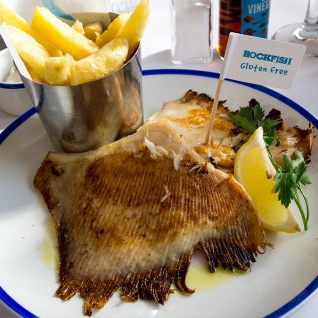 Rockfish – Torquay & Brixham